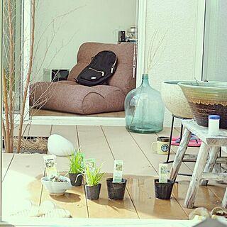 座椅子の人気の写真(RoomNo.2479673)