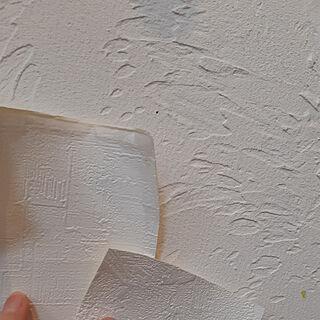 壁/天井/家づくり記録/平屋/ネコとエコの家/ねこ部...などのインテリア実例 - 2019-02-08 02:00:56
