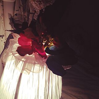 ベッド周り/照明/手作り/ハンドメイド/DIYのインテリア実例 - 2014-06-19 20:41:14