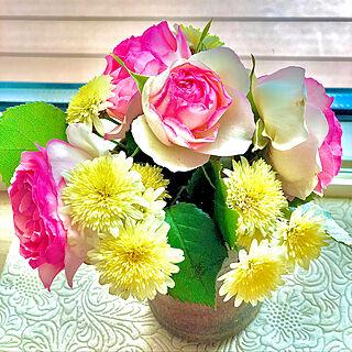 マーガレット/バラ/薔薇/花のある暮らし/庭のある暮らし...などのインテリア実例 - 2020-05-11 13:42:27