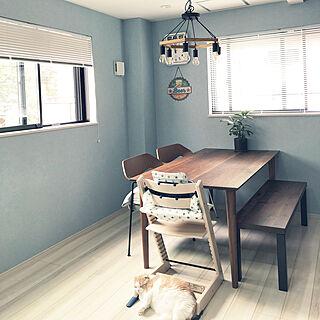 ブルーの壁/観葉植物/675chair/ダイニングテーブル/ブラインド...などのインテリア実例 - 2019-08-22 11:58:18