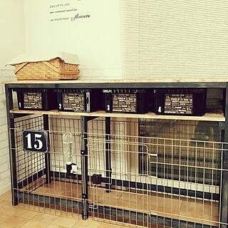 棚/カインズホーム/カインズホームのペンキ/DIY/プレート...などのインテリア実例 - 2016-01-25 22:49:03
