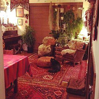 リビング/いぬもいる日常/ねこと暮らす。/植物のある部屋/緑のある暮らし...などのインテリア実例 - 2016-12-26 19:32:52
