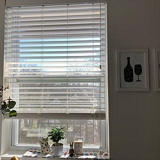 ディスプレイコーナー/アメリカ生活/観葉植物/北欧/リサラーソン...などのインテリア実例 - 2020-03-20 22:05:52