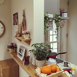 キッチン/観葉植物/IKEA/ニトリ/みかん...などのインテリア実例 - 2019-01-25 15:08:21