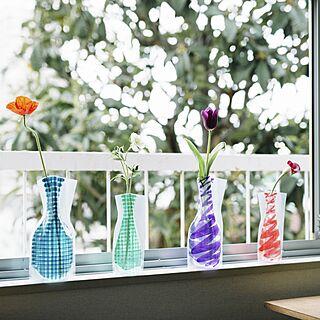 ビニール花瓶の人気の写真(RoomNo.1502326)