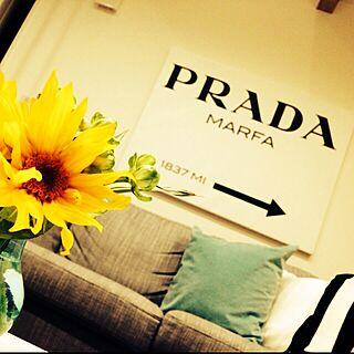、PRADAに関するさんの実例写真