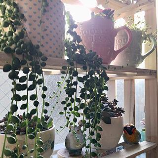 女性家族暮らし4LDK、スノコ棚に関するpuriyuzuさんの実例写真