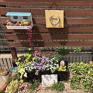 玄関/入り口/玄関前/フェンスDIY/多肉植物/ガーデニング雑貨...などのインテリア実例 - 2018-05-12 11:05:47