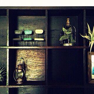 16マスシェルフ/ミニチュア/コレクションケース/ニトリ/ミニチュア雑貨のインテリア実例 - 2013-11-04 20:34:32