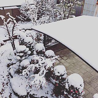 玄関/入り口/2階のベランダからの景色/お庭/雪のインテリア実例 - 2017-01-15 10:48:37