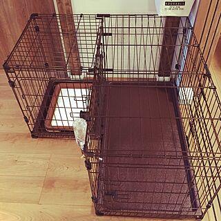 バス/トイレ/ドッグゲージ/ペティオ/犬と暮らす家のインテリア実例 - 2016-03-01 18:48:08