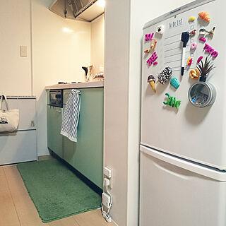 女性の、1R、一人暮らしの「キッチン」についてのインテリア実例