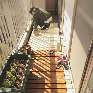 リビング/ベランダ菜園/ベランダDIY/こどもと暮らす/こどもと暮らす。...などのインテリア実例 - 2017-03-12 14:49:20