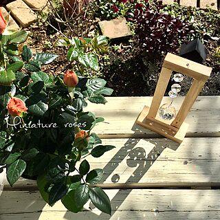 女性家族暮らし4LDK、Bedroom RURULOVEちゃんのサンキャッチャーに関するcherryさんの実例写真