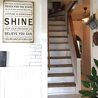 玄関/入り口/階段/ゴムの木/DIY/しゃれとんしゃあ会...などのインテリア実例 - 2015-07-25 09:37:56