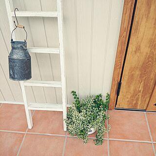 玄関/入り口/雑貨/植物/カフェ風を目指したい♡/ナチュラル...などのインテリア実例 - 2014-09-12 14:29:05