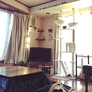 女性40歳の家族暮らし3LDK、あずき ♀1歳に関するmahi1101さんの実例写真