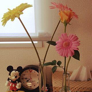 リビング/植物/観葉植物/IKEAのインテリア実例 - 2014-09-05 07:43:56