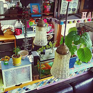 棚/賑やかな家/二世帯住宅の二階/三姉妹の母/DIY...などのインテリア実例 - 2017-05-24 15:15:39