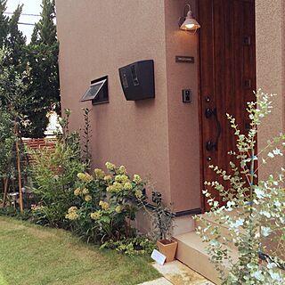 玄関/入り口/キチラーライト/観葉植物/IKEA/ユーカリ...などのインテリア実例 - 2014-08-13 12:20:44