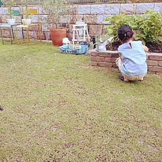 女性家族暮らし、アイアンチェアーに関するyukariさんの実例写真