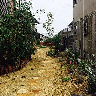 玄関/入り口/レンガの小道DIY/緑のある暮らし/庭/ウッドデッキ...などのインテリア実例 - 2017-09-15 12:47:43