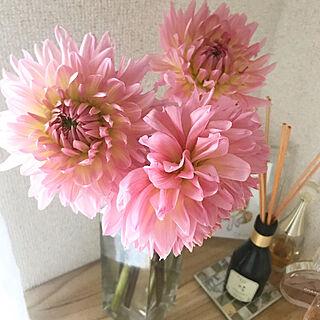 女性25歳の一人暮らし1K、生花に関するminmiさんの実例写真