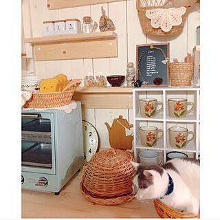 女性家族暮らし4LDK、普通のキッチンです(>_<)に関するmintcatさんの実例写真