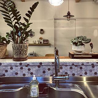 天然成分/手荒れ/ディッシュソープ/マルセイユ/キッチンのインテリア実例 - 2020-04-06 07:38:49