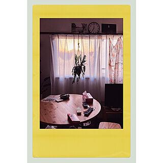 窓/植物のある暮らし/植物のある部屋/北欧/ナチュラル...などのインテリア実例 - 2020-12-18 10:36:14
