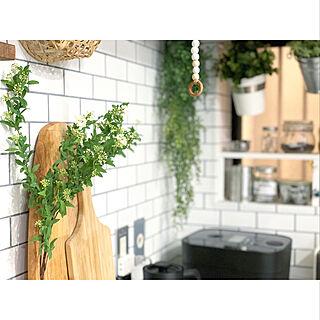 キッチンインテリア/インスタ→kiki_nekko/リビングインテリア/観葉植物/植物...などのインテリア実例 - 2020-02-27 22:57:53