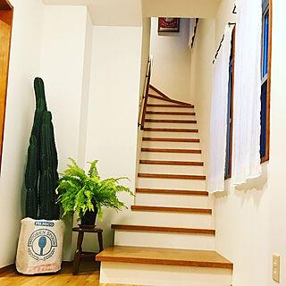 玄関/入り口/Vintageposter/シアーカーテン/階段/タマシダ...などのインテリア実例 - 2017-10-06 11:38:05