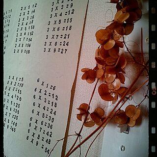 リビング/ドライ/九九/スイッチのインテリア実例 - 2013-10-30 11:28:54