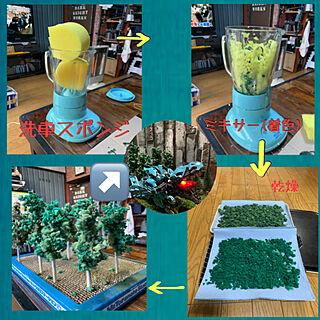 樹木/プラモデル/塗装DIY/ゾイド/ゾイドシリーズ...などのインテリア実例 - 2020-01-01 01:14:05