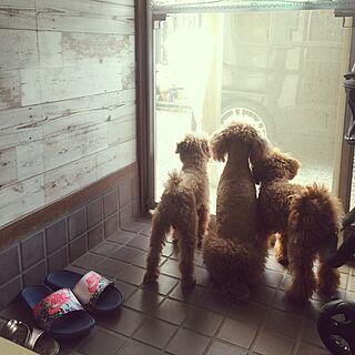 女性家族暮らし4LDK、リメイクシートオールドウッドに関するsei.kan.hide.chiyoさんの実例写真