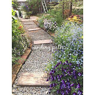 女性家族暮らし4LDK、芝生の庭から草花木果の庭へに関するcherryさんの実例写真