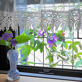 バス/トイレ/京都/京町家に住む/オーガニック系の暮らし/緑と花のある暮らし...などのインテリア実例 - 2020-06-03 12:36:38