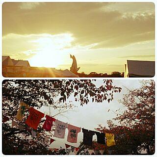 玄関/入り口/ロハスフェスタ大阪/ロハスフェスタin万博公園のインテリア実例 - 2014-11-02 17:57:55