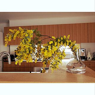 フラワーベース/観葉植物/棚のインテリア実例 - 2020-03-30 16:51:01