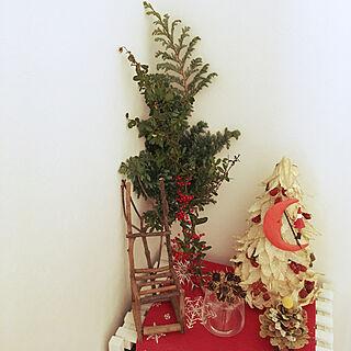 キッチン/クリスマス/観葉植物/ナチュラル/植物...などのインテリア実例 - 2017-11-10 07:44:47