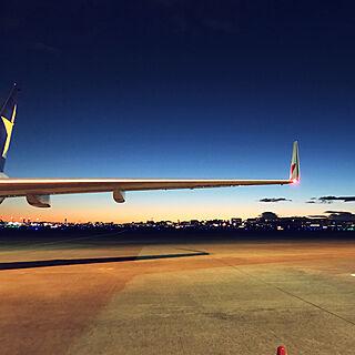 男性一人暮らし1LDK、飛行機に関するn.yasuさんの実例写真