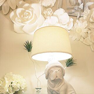 フランフラン照明の人気の写真(RoomNo.1854048)