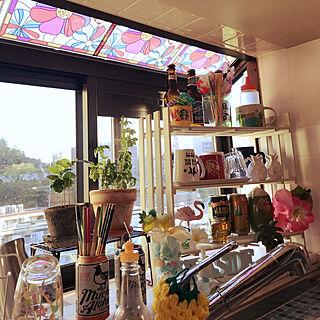 キッチン/フラミンゴ/プルメリア/コーヒーの木/バジル...などのインテリア実例 - 2018-10-02 06:29:07
