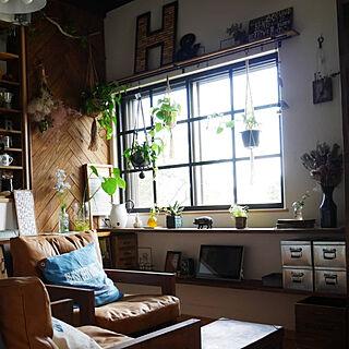 女性44歳の家族暮らし、ブログ始めました(=´∀`)に関するandante365さんの実例写真
