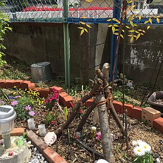 garden/庭/玄関/入り口のインテリア実例 - 2020-04-19 12:35:35