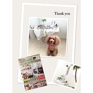 女性家族暮らし、4月21日発売に関するSaraさんの実例写真