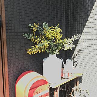 チェスト/花のある暮らし/ドライフラワー/観葉植物/ミモザ...などのインテリア実例 - 2020-02-27 11:21:58