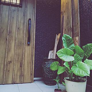 玄関/入り口/空き地からの贈り物/庭/子供と暮らす家/植物のある暮らし...などのインテリア実例 - 2017-09-16 01:33:55