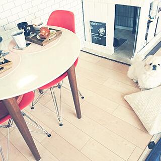 女性38歳の家族暮らし3LDK、愛犬と暮らすに関するyukagomaさんの実例写真